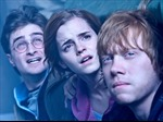 Fan Việt háo hức sắp được xem tập cuối 'Harry Potter'