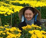 Rực rỡ sắc xuân làng hoa Bà Bộ