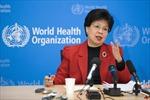 Hội đồng Điều hành WHO bổ nhiệm tân Tổng Giám đốc
