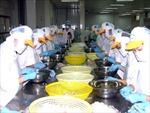 Nhiều nhà máy ở Cà Mau mở cửa ngày đầu năm