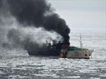 16 thuyền viên Việt Nam trên tầu cá của Hàn Quốc bị nạn đã về Niu Dilân