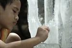 Việt Nam tham dự liên hoan phim Cộng đồng Pháp ngữ
