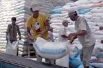 Đẩy mạnh xây dựng thương hiệu gạo Việt Nam