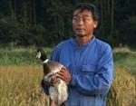 """Chuyện người nông dân Nhật Bản """"làm thay đổi thế giới"""""""