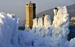 Châu Âu: Gần 500 người chết do lạnh giá