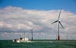 Khánh thành nhà máy điện gió lớn nhất thế giới