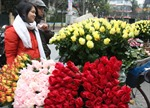 Hoa Hà Nội không kịp đón ngày lễ tình yêu