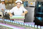 Tháng đầu năm, doanh thu xuất khẩu của Vinamilk tăng gấp 5 lần