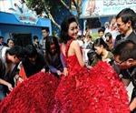 Cầu hôn bằng váy triệu đóa hồng