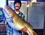 """Bắt được cá """"quái vật"""" nặng 20kg"""