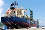 Hyundai Vinashin đóng mới 16 tàu trọng tải lớn