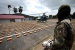 Panama thu giữ 1,3 tấn ma túy