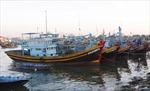 Vinashin đầu tư 120 tỷ đồng đóng tàu đánh cá vỏ thép