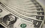 Giới hạn trạng thái ngoại tệ cuối ngày không quá 20% vốn tự có