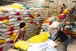 Thu mua tạm trữ 1 triệu tấn gạo ở ĐBSCL: Cần quan tâm đến lợi ích của nông dân
