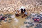 Mặn xâm nhập sớm, nhiều nơi thiếu nước ngọt