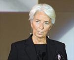 IMF kêu gọi Mỹ đóng góp nhiều nguồn lực hơn nữa