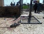Đánh bom liều chết ở Ápganixtan, 12 người thiệt mạng