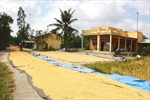 Xây dựng nông thôn mới ở đồng bằng sông Cửu Long