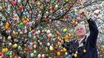 """Cây táo kỳ lạ """"mọc"""" 10.000 quả trứng Phục Sinh"""