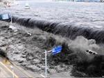 Xây dựng hệ thống cảnh báo sóng thần tại 13 địa phương