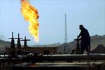 """Thị trường dầu mỏ tiếp tục """"gài số lùi"""" tuần thứ hai liên tiếp"""