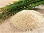 Gạo nhân tạo - sản phẩm mới của các nhà khoa học Inđônêxia