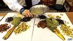Thuốc bắc Trung Quốc chứa nguyên liệu bất hợp pháp