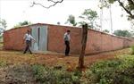 Dự án đường dây 220 kV Đắk Nông - Phước Long - Bình Long: Xuất hiện hàng loạt nhà tạm xây dựng trái phép