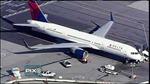Máy bay hạ cánh khẩn vì bị chim tấn công