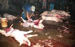 Hà Nội tiến tới chấm dứt giết mổ gia súc, gia cầm nhỏ lẻ