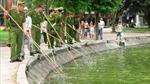 Xem các chiến sĩ cảnh sát vớt rác hồ Gươm