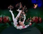 Đoàn nghệ thuật xiếc Vân Nam sẽ biểu diễn tại Việt Nam