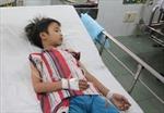 Ăn nhộng ve sầu nhiễm nấm độc, 15 trẻ vào viện