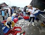 Tăng cường hỗ trợ giảm tổn thất sau thu hoạch thủy sản