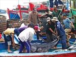Nhận diện và định hướng phát triển không gian kinh tế biển