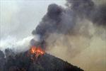 Cháy rừng khủng khiếp ở Mỹ