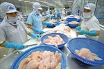 Thượng nghị sĩ Mỹ phản đối kiểm soát cá da trơn Việt Nam