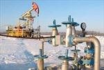 Nga và Mỹ ký hiệp định khai thác dầu mỏ ở Tây Siberia