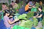 Người tiêu dùng Hà Nội không phân biệt được rau an toàn