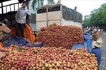 Xuất trên 14.000 tấn vải quả qua cửa khẩu Lào Cai