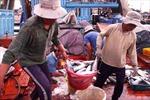 Đề xuất xây dựng 5 trung tâm nghề cá lớn