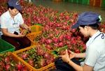 Cấp bách gỡ khó cho tiêu thụ nông sản