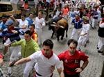 Tây Ban Nha: Đua cùng bò tót, 38 người bị thương