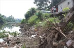 Bờ tả sông Nhuệ sạt lở nghiêm trọng
