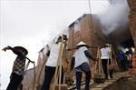 Tiến sỹ Việt 'phát minh' ra gạch làm từ... rơm