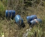 Kinh hãi 250 bào thai bị vứt trong rừng