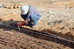 Phát hiện thuyền gỗ 5.000 năm tuổi