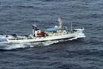 Nhật - Trung lập kênh liên lạc quân sự trên biển Hoa Đông