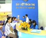 Bảo Việt phấn đấu dẫn đầu thị trường bảo hiểm phi nhân thọ